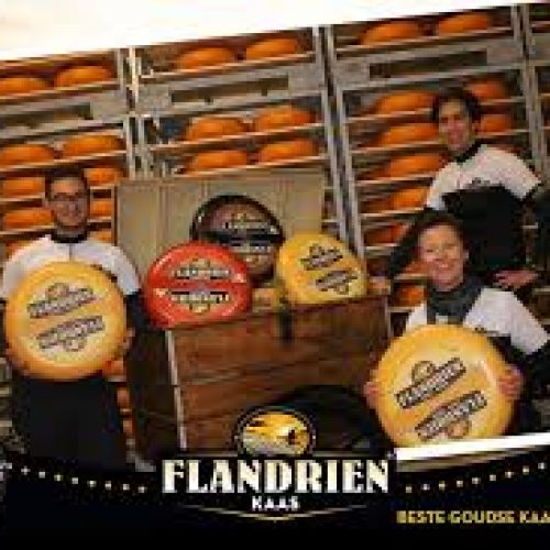 flandrien-kaas-bedrijfsbezoek-violettacars-google-facebook-1.jpg
